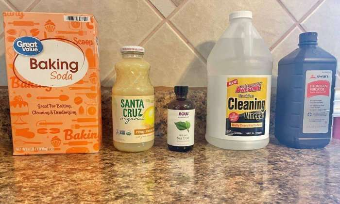 Can-you-remove-mold-from-your-house-naturally